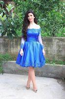 Wholesale Cocktial Dresses - Elegant Royal Blue Short Prom Dresses Cheap With Long Sleeves Off Shoulder Lace Appliques Plus Size Women Formal Cocktial Party Dress 2017