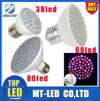 Wholesale led grow house - led 2.2w 3w 4.5 W E27 Red Blue 38 60 80 led leds AC 110v 220v Hydroponic green house flower garden Light LED Plant Grow Growth Light lamp