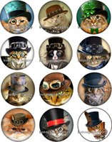 Wholesale cat food free shipping - Free shipping punk cats Snap button Jewelry Charm Popper for Snap Jewelry good quality 12pcs   lot Gl293 jewelry making