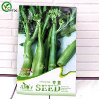 Vagetable Seeds organic kale seeds - 200 particles bag Chinese Kale Seeds Bonsai garden plant non GMO organic vegetable seeds c001