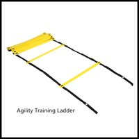 Wholesale Popualr Durable Flat Rung M Agility Ladder for Speed Soccer Football Fitness Feet Training