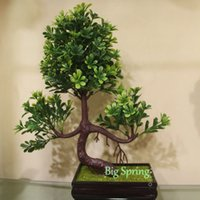 Wholesale Small Leaves Plants - Potted Artificial Oranges Tangerine Pine Trees Amber Leaves Succulents Yacon Small Floral Plants Home Kitchen Office Shop Fair Meeting Decor