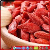 Wholesale Himalaya goji berry dry goji berries goji berry dried with benefits to you health with EU certified