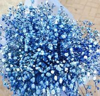 Wholesale River blue color beautiful babysbreath flower seeds babysbreath flower seeds babysbreath flower seeds for sale
