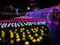 outdoor parks - LED lantern show dream lights LED roses flowers colorful LED Outdoor square landscape park glistening Holiday lights