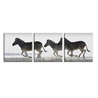 Wholesale zebra print decorations - 3 Piece Black And White Zebra Oil Painting Canvas Wall Art Decor Painting Patterns Wall Pictures Decoration for Living Room And Office