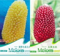 Vagetable Seeds black sweet corn - Vegetable seeds sticky sweet glutinous corn black safflower seeds can be eaten raw strawberry pineapple fruit yielding corn seed HY1163