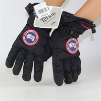 Wholesale Wholesale Sporting Gloves - Canada Unisex Gloves Goose Arctic Program Outdoor Warm Glove Windproof Polar Fleece Mittens Sports Snowboard Skiing Mitten Gloves