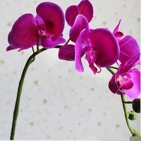 künstlicher schmetterling für display großhandel-15% Rabatt! 2016 neue Ankunft Display Blume Moth Orchidee Blume Schmetterling Orchidee künstliche Blume für Hochzeit und Dekoration 30pcs / lot