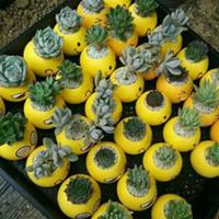 ingrosso mini piantatori-Mini Emoji Fioriere decorative Pentole Cartoon ceramica QQ Expression Plant Fioriere Fioriere da giardino Patio 6 Styles WX-P06