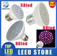 Wholesale Green Grow Light - in stock led 2.2w 3w 4.5 W E27 Red Blue 38 60 80 led leds Hydroponic green house flower garden Light LED Plant Grow Growth Light Bulb Lamp