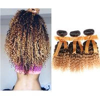 Wholesale Extensions 27 - 3 Bundles lot Malaysian Ombre Human Hair Extensions Kinky Curly Hair 1B# 27# 7A grade 100g bundle