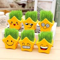 Wholesale Desktop Shapes - Emoji Bonsai Planters Face Expression Pots Small Landscape Basin Planter Pot Yellow Color Pots With Soil Seeds Little Star Shape 6 Patterns