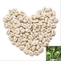 Wholesale Magic Growing Message Beans Seeds - 50PCS Growing Message Beans Seeds Magic Bean English Magic Bean Bonsai Green Office Home Decoration Magic Beans 0800