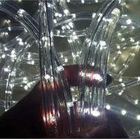 lumières menées extérieures de disco achat en gros de-100 mètres 110v 220v 2 fil rond LED lumière de corde IP67 Flex LED bande lumières PVC éclairage extérieur chaîne Disco Bar Pub Fête de Noël