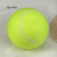 ingrosso palline giocattolo gonfiabili-Rifornimenti di animali domestici Interactive Toy Dog 1 PC 24CM Pallina da tennis gigante per animali domestici Giocattolo da masticare Grandi forniture gonfiabili Giocattoli da esterno Sportivi