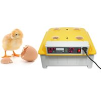 Wholesale Poultry Egg Incubators - 48 EGGS EGG INCUBATOR HATCHER Automatic 48 Eggs Incubator Chicken Incubator Poultry Hatcher Incubators + Free Candler