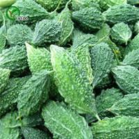 ingrosso sementi di zucche-Semi Momordica charantia, zucca amara, semi di ortaggi biologici quash 20pz S064