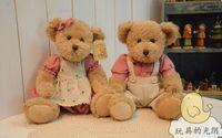 Wholesale Teddy Bear Couple Stuffed Animals - tuffed Animals Stuffed Plush Animals Free shipping 28cm 2pcs pair lovely mini couple teddy bear with cloth toy dolls girls birthday&amp...