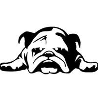 шинные отличительные знаки оптовых-10 шт. Устали Щенок Собака Наклейка Автомобиля Наклейки Черный Белый 23 см Виниловый Клей Всего Тела Английский Бульдог
