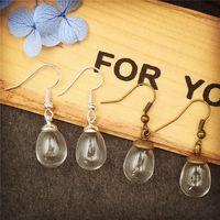 Wholesale Earrings Supplies - 10sets lot (5pairs) 14.5*11mm clear empty glass globe ball with earring findings fashion women earrings jewelry findings supply wish bottle