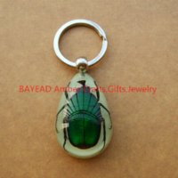 Wholesale Amber Insect Ring - Real Green Beetle In Resin Insect Amber Keychain,Key ring,Glow-In-Dark Keychain Free Shipping beetle repellent ring rain