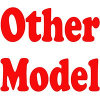 Wholesale Heels Special - Other Model Special Link