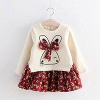 vestidos de flores de invierno bebé niñas al por mayor-Niñas Vestidos de Conejo Lindo Invierno Otoño Niña Princesa Vestido Flores Impresas Niñas Vestido de manga larga