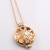 Wholesale Lockets Fragrance - Vintage Gold Plated Alloy Flower Fragrance Aromatherapy Essential Oil Diffuser Locket Pendants Long Chain Women Necklace N424