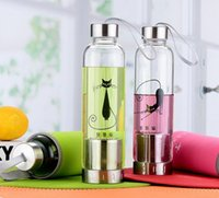 Wholesale Fruit Water Infuser - 2016 Fashion creative glass cup tea cup outdoor water bottle free fruit infuser water bottle festival gift cup