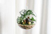 ingrosso piante di terrario-Clear Glass Ball Hanging Air Plant Terrarium Wedding Candlestick Tealight titolari per la cerimonia nuziale Home Decor 8 cm 10 cm 12 cm 15 cm