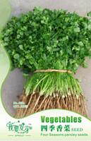 Wholesale Parsley Herbs - Easy Grow 160pcs coriander herb Seeds, Original Package vegetable caraway Four seasons parsley seeds DIY HOME PLANT 3bags per lot