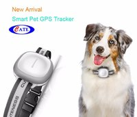 Top Sale Mini Real Time GSM GPRS GPS Tracker Car Vehicle Dog Tracking Device System com função GPS 5M GPS Precisão
