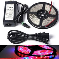 Wholesale Power Plant Supply - 1 5M 5:1 5 red 1blue Full spectrum Waterproof LED Plant Growing Greenhouse Lamp SMD5050 60led m strip light+DC 12v power supply