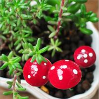 ingrosso piante per giardini fiabeschi-10pcs Mini Red Mushroom Garden Ornament Vasi per piante in miniatura Fata casa delle bambole
