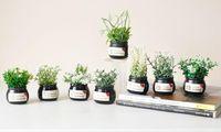 ingrosso mini piante artificiali decorative-Mini Bonsai Simulation Decorativi fiori artificiali Falso verde Pot Ornamenti piante