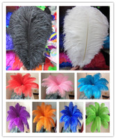 Wholesale black plumes - Wholesale 14-16inch White black red pink blue yellow green purple rose Ostrich Feather Plumes for Wedding centerpiece table centerpiece
