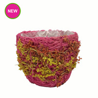 Wholesale PlantPot Garden Tapered Shape Straw flower Pots Colorful Stained Planter With Waterproof Plastic Bag Inside Pot Product Code B