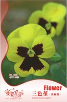 Wholesale Viola Tricolor Flower - Flower Viola tricolor Seeds, Original Package 35pcs Garden bonsai Flower seeds, Easy Grow pansy 3bags per lot