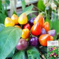 ingrosso semi di peperoncino-100 pz Rare multi colore semi di peperoncino semi ornamentali plantas, Bonsai in vaso plantas per casa jardin