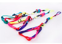 Wholesale Kitten Cat Harness Lead - 1 PCS Adjustable Rainbow color Pet Dog Leash Small Large and medium sized dog Puppy Cat Rabbit Kitten Nylon Leash Harness Collar Lead