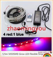 luzes de crescimento hidropônico vermelho azul venda por atacado-YON 1/5 m 5050SMD Crescer CONDUZIU a Luz de Tira Flexível 4: 1 4 Vermelho 1 Azul Aquário Estufa Planta Hidropônica Crescente Lâmpada + RF remoto + poder