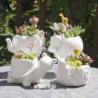 Wholesale Super Tortoise - Wholesale-Free Shipping Small animal ceramic flowerpot super white porcelain elephant snail tortoise garden Mini Pot Desktop Ceramic Pot