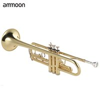 Wholesale valve oil - wholesale ammoon Trumpet Bb B Flat Brass Gold-painted Exquisite Durable Musical Instrument with Mouthpiece Valve Oil Gloves Strap Case