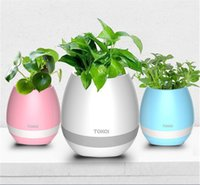 Wholesale TOKQI bluetooth Smart Music Flower ports intelligent real plant touch play flowerpot colorful light long time play bass speaker