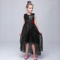 Wholesale Silver Girls Dance Skirt - 2017 party style Prom edition flower girls skirt of the girls show dance dress children princess skirt long trailing