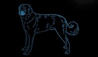 LS1794-b-Anatolien-Chien-Pet-Shop-Neon-Light-Sign.jpg
