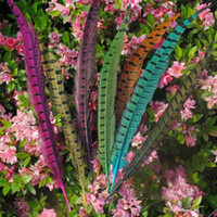 Wholesale Wedding Pheasant Feathers - 100pcs lot 30-35cm long natural DIY pheasant tail feather mask feathers Hair extension centerpieces wedding party decorations