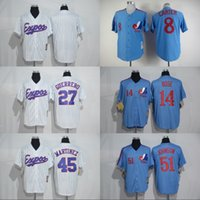 Wholesale Andre Dawson Jersey Expos - Montreal Expos Baseball Jerseys 8 Gary Carter 10 Andre Dawson 14 Pete Rose 27 Vladimir Guerrero 30 Tim Raines 51 Randy Johnson Jersey