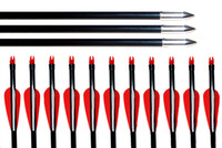 "Wholesale Bow Pack - 12pcs pack,31.5""30""29""28"" Archery Nocks Arrows Fiberglass Target Practice Arrow for Compound &Recurve Bow Practice"